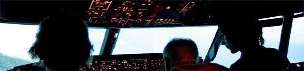 flightsimulator_600.jpg