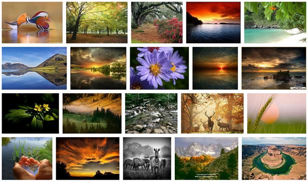 naturephotography.png