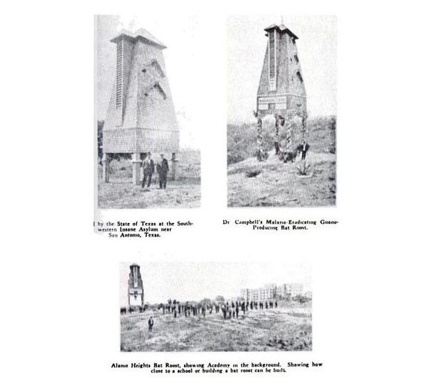 Campbell's Bat Towers.jpg