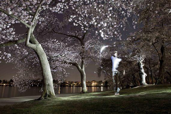 Painted blossom 3 sm.jpg