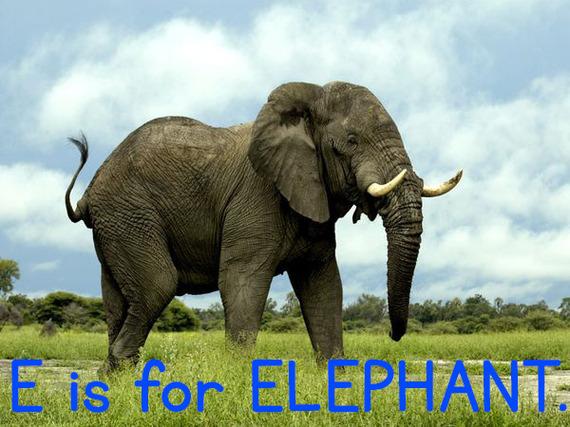e_elephant.jpg