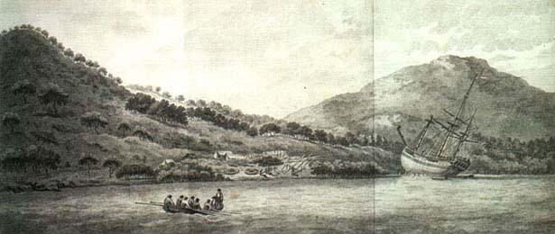 endriver (1)-615.jpg