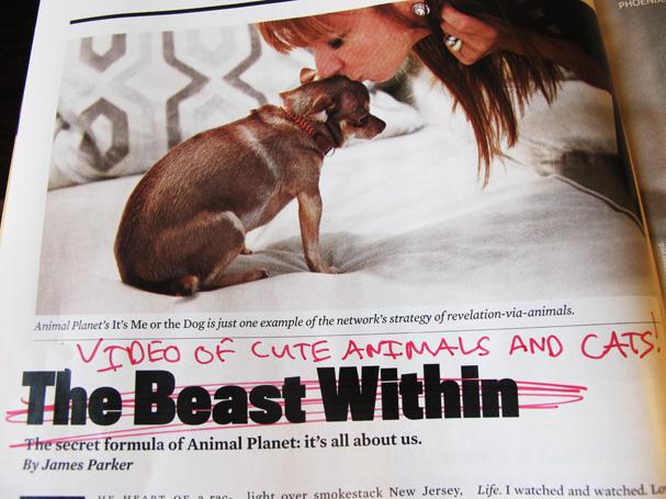 funny headline_607.jpg