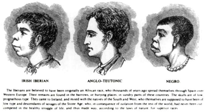 Scientific_racism_irish.jpg