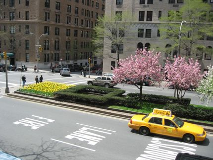Nycparkavenue145pm