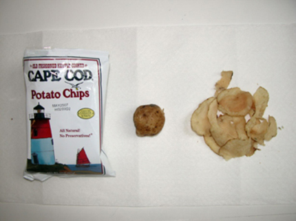 Capecodchips