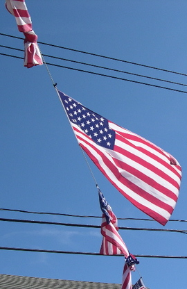 Flags05