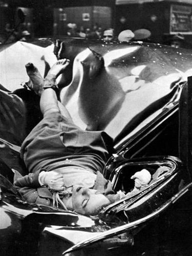 Evelynmchale