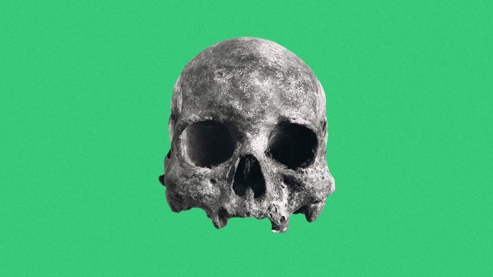 A skull from Lagoa Santa, Brazil