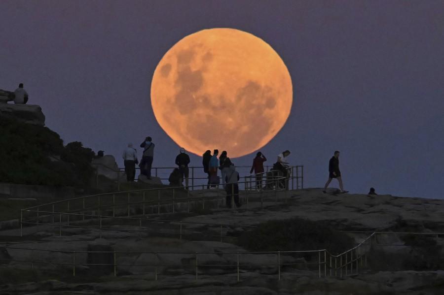 People stand along a walkway, looking toward the moon.