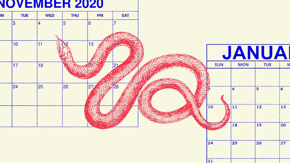 An illustration of a snake and the calendars for November 2020 and January 2021.