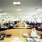 photo: an open-plan office