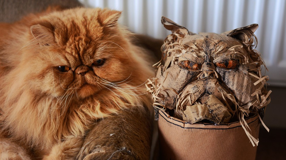 A cat next to a fake look-alike cat