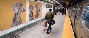 Mosaics of silver-colored dogs line the walls of a New York subway station.