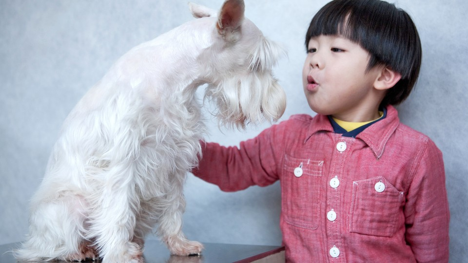 A woman talks to a dog.