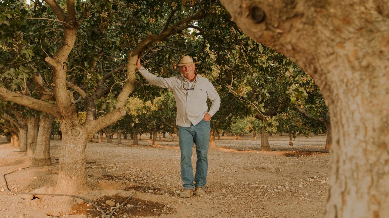 Matt Angell posing between almond tress on an orchard