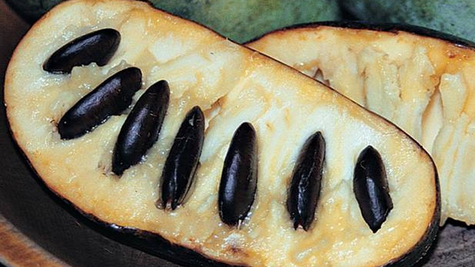 A sliced-open pawpaw