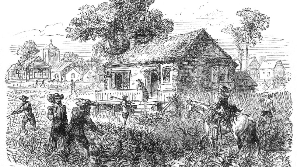 A black-and-white sketch of people cultivating tobacco on a Virginia farm in the 1600s