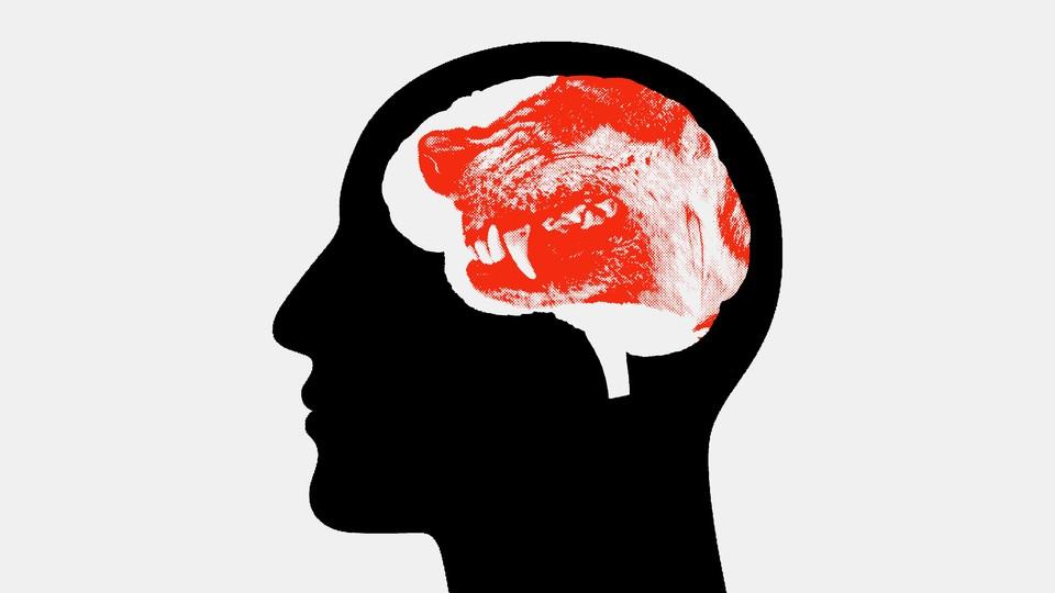 Illustration of a head an animal head inside.