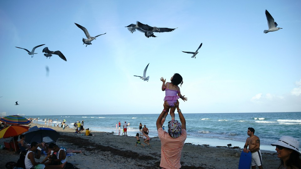 On a beach, a father holds his daughter up above his shoulders, and she looks up at the birds