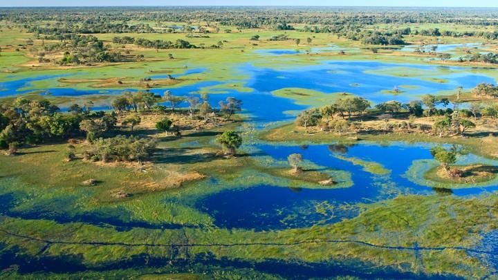 The Okavango Delta, in northern Botswana