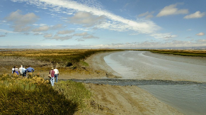 Researchers stand near water from a former industrial salt pond as it flows into the San Francisco Bay