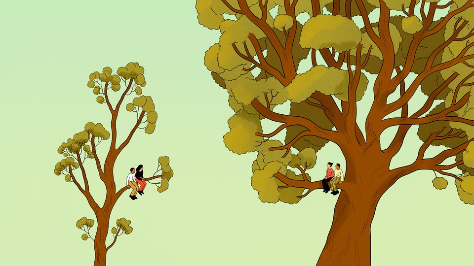 illustration of two couples sitting in trees