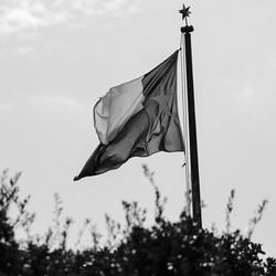 The Texas flag flies above city hall.
