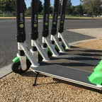 A row of Lime scooters in Washington, DC