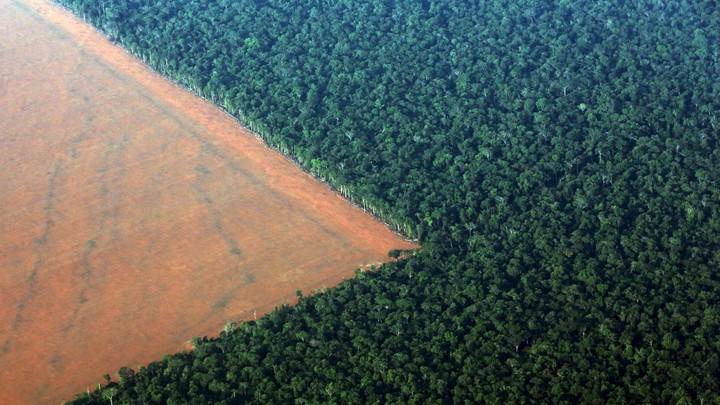 Deforested land in Brazil