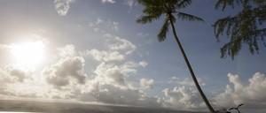 a photo of a beach in Hawaii