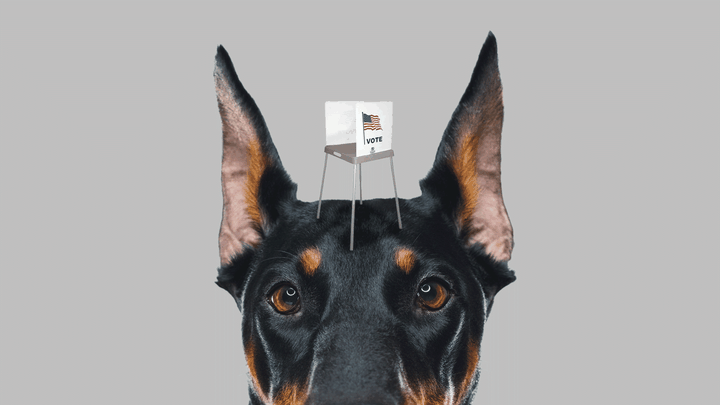 An illustration of a guard dog with a small voting booth on its head