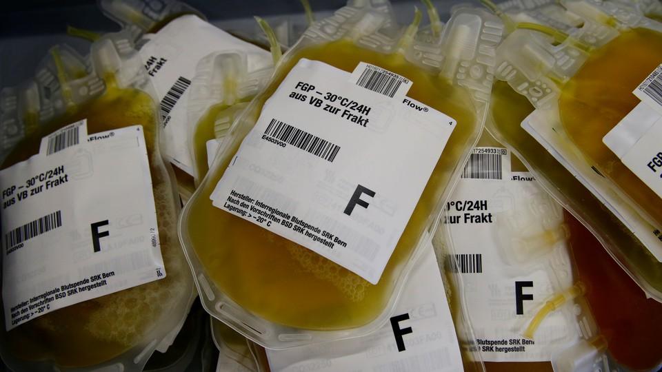 Bags of blood plasma