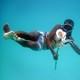 Hamissi Usi swims with an octopus on Pemba Island, Tanzania, in 2010.