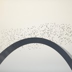 A flock of birds flies past the Gateway Arch.