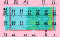 Illustration of chromosomes against a pink background