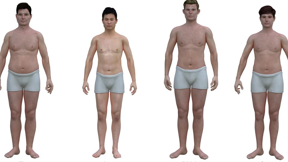 Mens idea of the perfect female body
