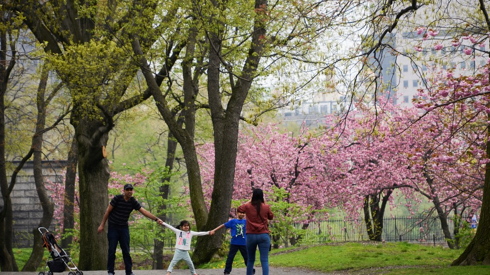 A family plays in Central Park