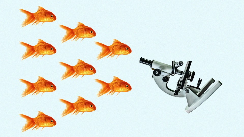 An illustration of a microscope and goldfish
