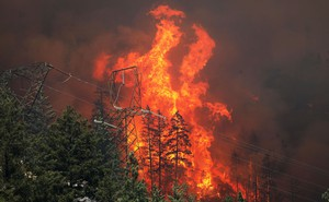 A large fire towers above a burning forest.