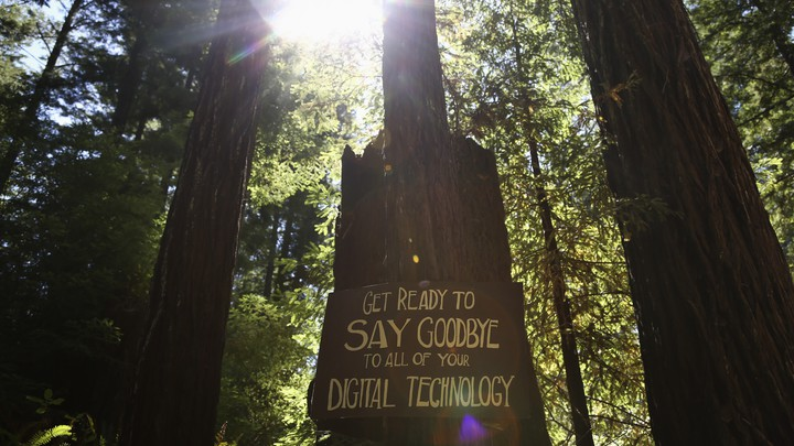"A group of trees with a sign that reads, ""Get ready to say goodbye to all of your digital technology"""