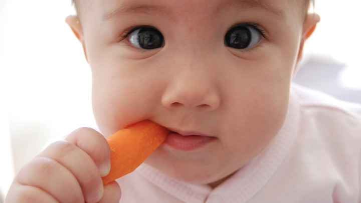 A baby eats a baby carrot.