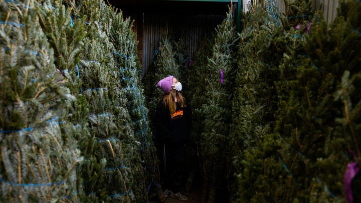 A girl wearing a mask stands between two rows of Christmas trees.
