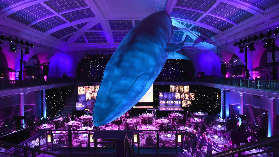 A view of the whale room in the American Museum of Natural History.