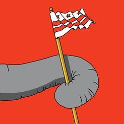 An elephant waving a D.C. flag