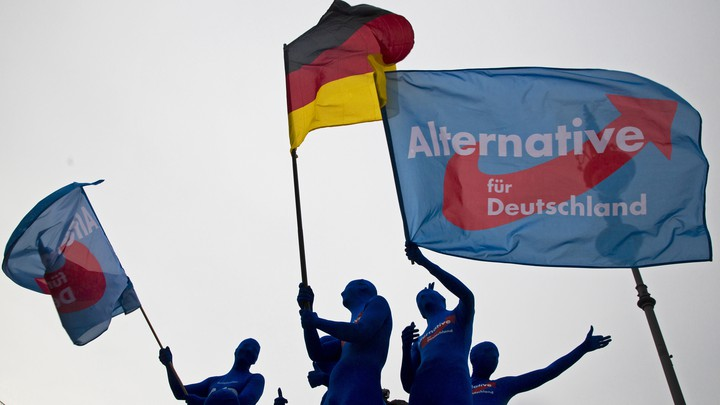 AfD supporters attend a rally in 2014.