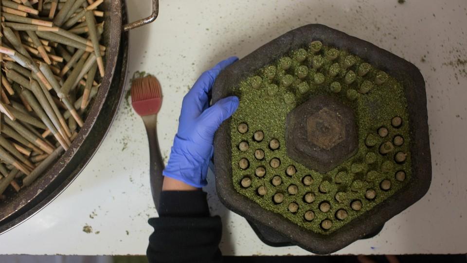 A person wearing gloves prepares medical marijuana.