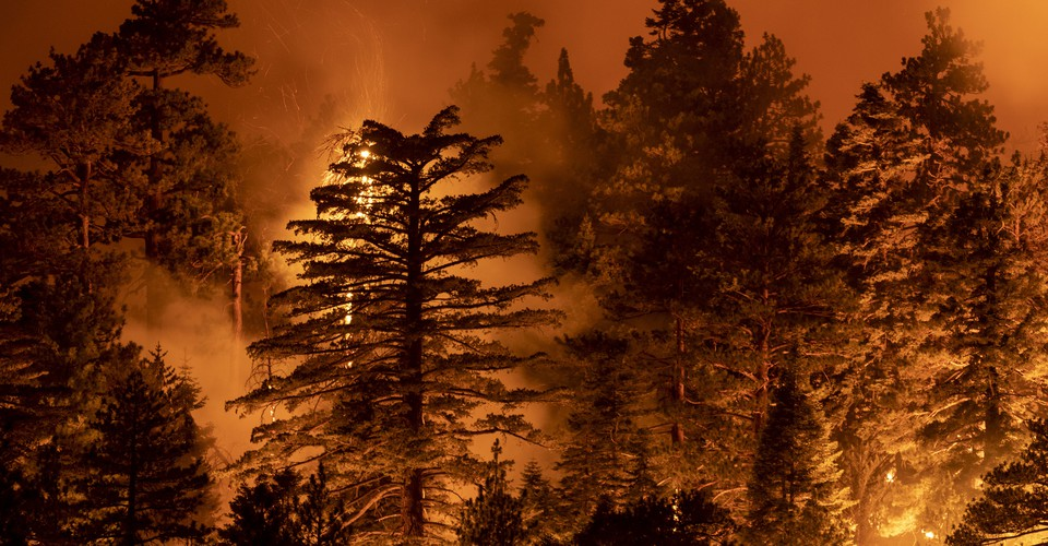 The Most Important Number for the West's Hideous Fire Season