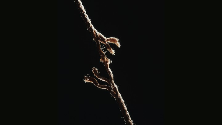 A fraying rope