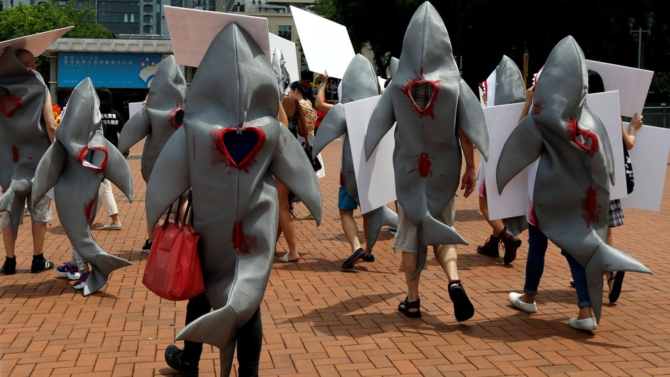 Activists protest a Chinese restaurant for providing shark-fin soup.